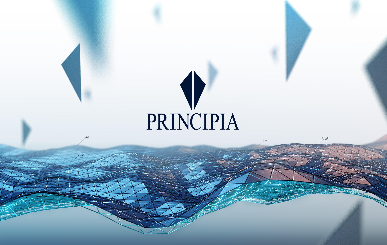 principia_grille
